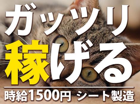 ★時給1500円!★ ガッツリ稼げるシートの製造!