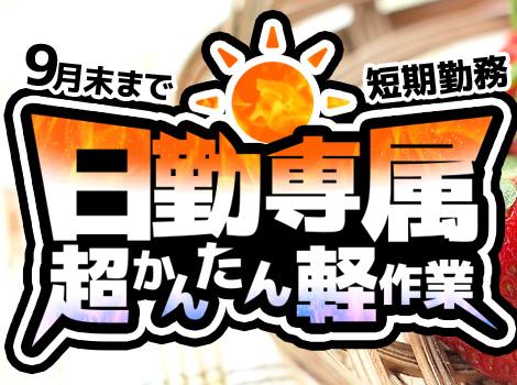 ★9月末までの短期★ 超かんたんバリ取り作業!!